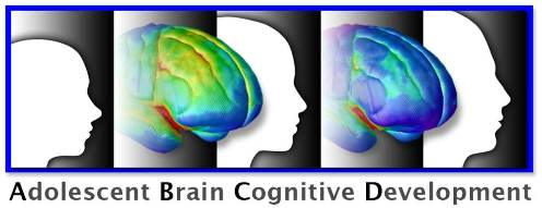 ABCD Study Logo with brain and head profiles