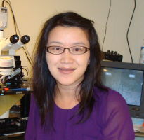 Alice Dobi (Yue Wu), PhD, Postdoctoral Fellow