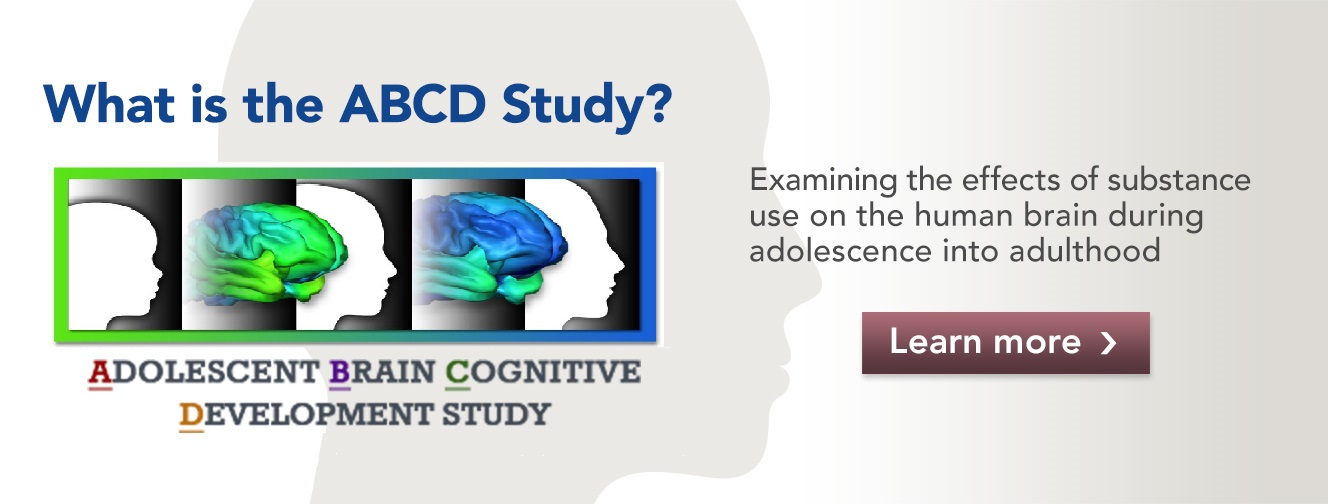 Adolescent Brain Cognitive Development Study