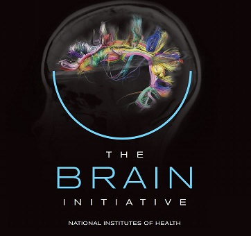 The Brain Initiative - National Institutes of Health, shows brain wiring diagram