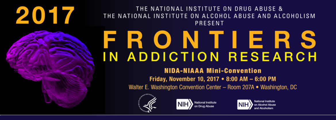 Frontiers in Addiction Research, shows a brain model