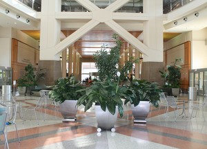 Clinical Research Center Atrium