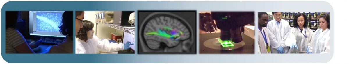 Collage of laboratory scenes, brain images, and scientists