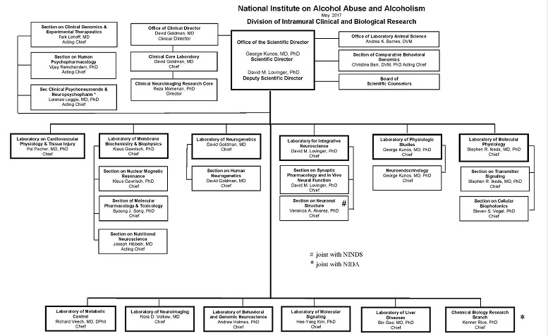 alcoholism clinical and experimental research pdf