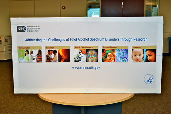 An exhibit on Addressing the Challenges of Fetal Alcohol Syndrome