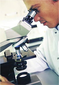 Photo of researcher looking in microscope